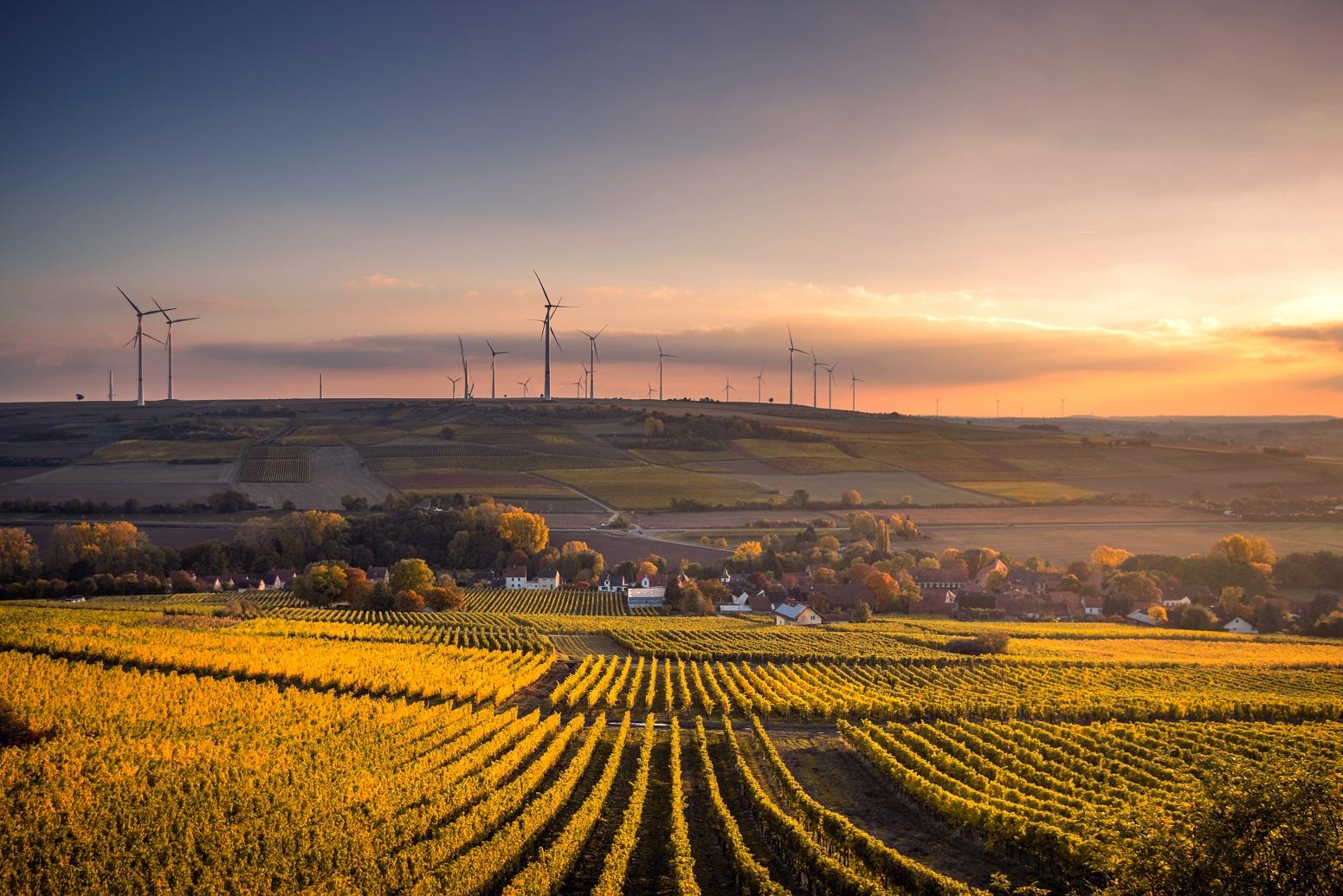 Strom sparen mit Erneubarer Energie